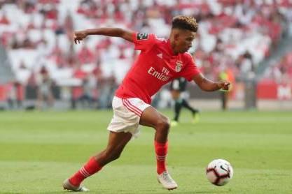 Gedson Fernandes (foto: Sport Lisboa e Benfica)