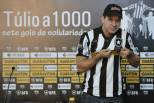 Túlio Maravilha no Botafogo